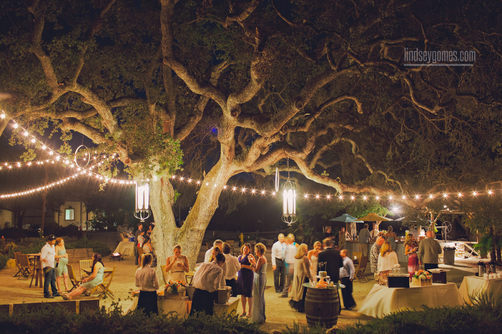 marc amp kelly wedding at cass winery � templeton ca