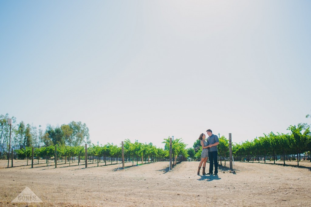 engagement portraits | lindsey gomes photography_0006