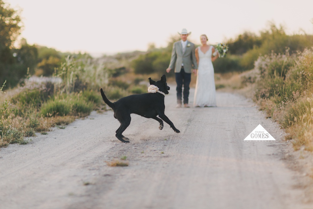 ShepherdWeddingLindseyGomesPhotography_0066